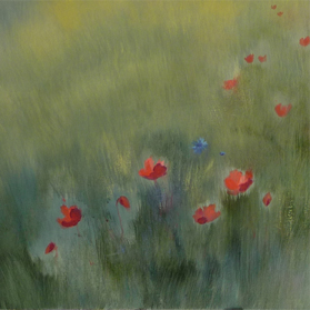 Poppies / Klaprozen