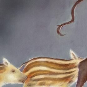 Wild boar piglets / Wilde zwijntjes